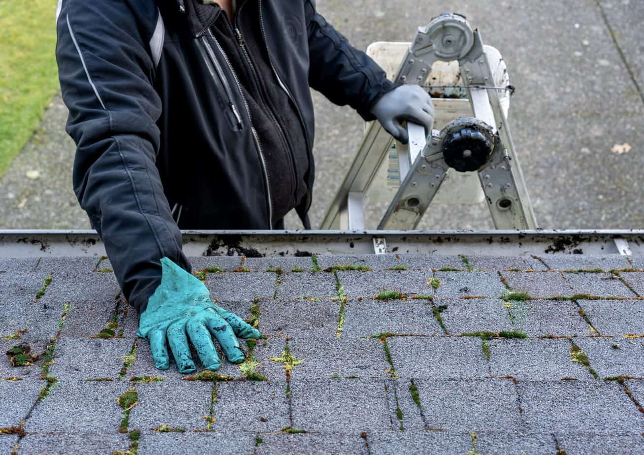 Roofing replacement MI